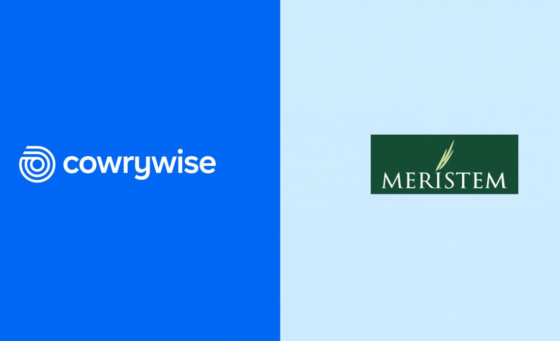 Cowrywise Partners Meristem