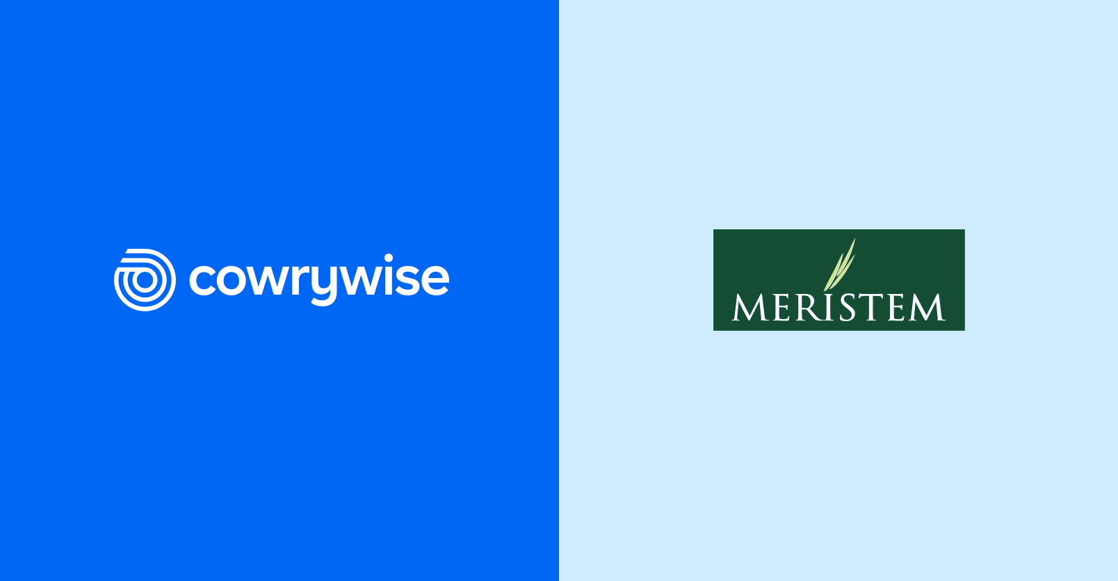 Cowrywise Partners Meristem On Mutual Funds