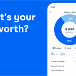 cowrywise-update-your-net-worth