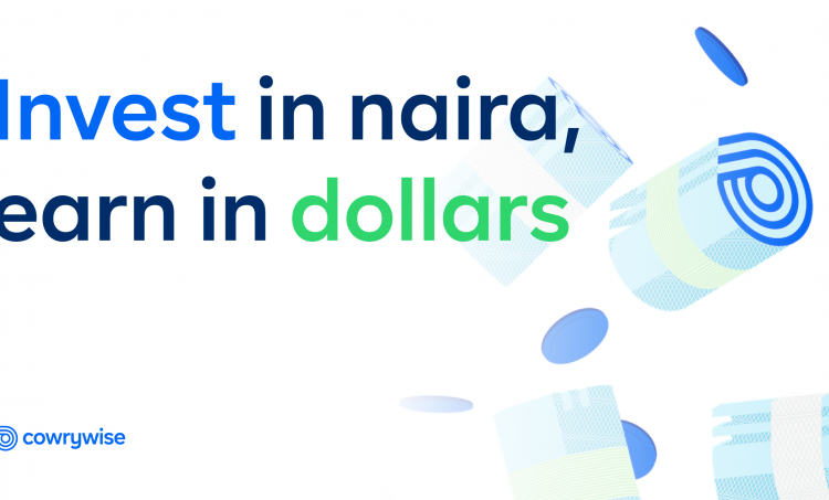 NEW: Introducing Dollar Investments for Nigerians